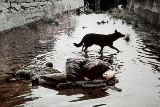 Image result for сталкер фильм тарковского